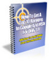 Thumbnail 10 Ranking In Google And MSN - PLR Rights Included